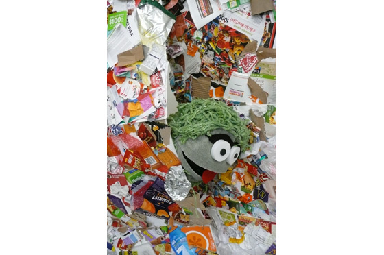 But curiosity takes them to Trash Mountain where they discover a strange creature - Oscar the Grouch.
